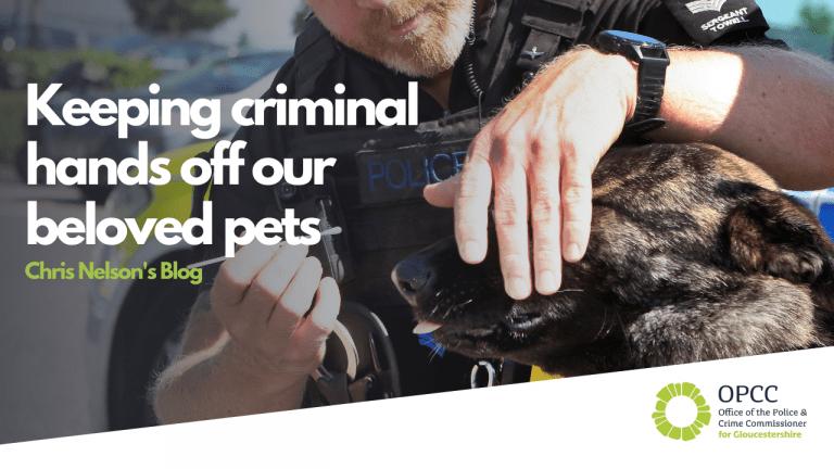 Keeping criminal hands off our beloved pets